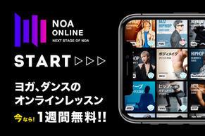 noaonline_start.jpg